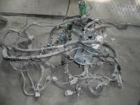 Проводка моторного отсека Ford Focus 2