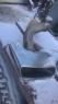 Насадка глушителя Audi A7 4М0253682G